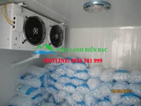 kho lạnh bảo quản đá lạnh