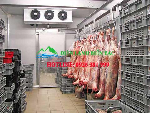 kho lạnh bảo quản thịt lợn