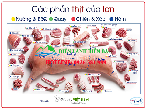 kho-lanh-bao-quan-thit-lon-1