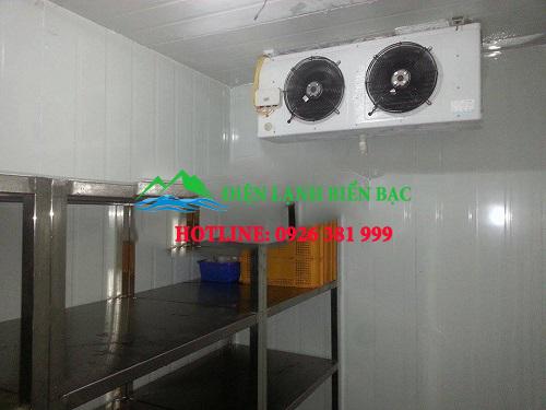 lắp đặt kho lạnh bảo quản cá