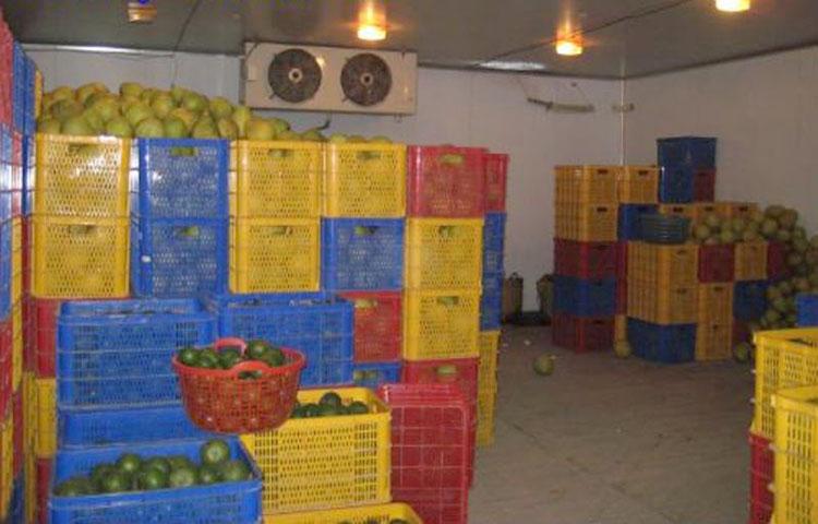 Lắp đặt kho lạnh bảo quản hoa quả, kho lạnh bảo quản trái cây, thi công kho lạnh bảo quản chuyên nghiệp