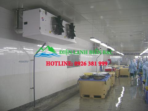 lắp đặt kho lạnh bảo quản thủy sản, thi công kho lạnh bảo quản thủy sản, kho bảo quản hải sản