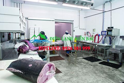 thi-cong-kho-lanh-bao-quan-thuy-san, lắp đặt kho lạnh bảo quản thủy hải sản