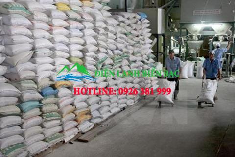 kho-lanh-bao-quan-gao, lắp đặt kho lạnh bảo quản gạo, kho lạnh bảo quản gạo, thi công kho lạnh giá rẻ