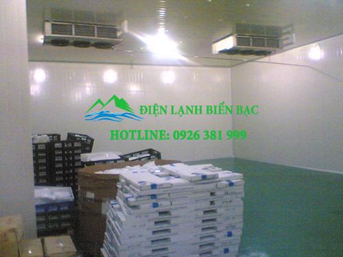 lắp đặt kho lạnh bảo quản hạt giống. thi công kho lạnh bảo quản hạt giống, kho lạnh bảo quản giá rẻ