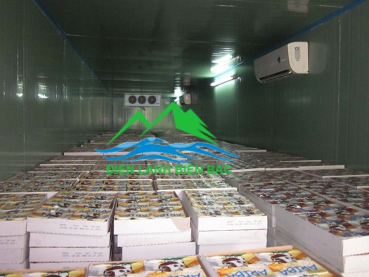 Lắp đặt kho lạnh bảo quản hoa tươi, lắp đặt kho lạnh bảo quản hoa quả