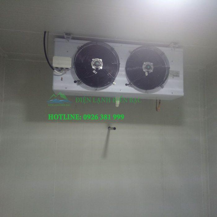lắp kho lạnh bảo quản chuyên nghiệp